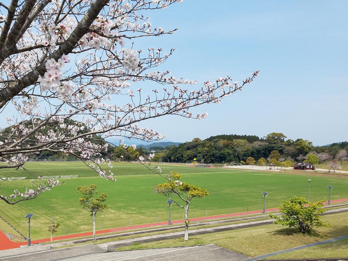 薩摩川内市丸山自然公園